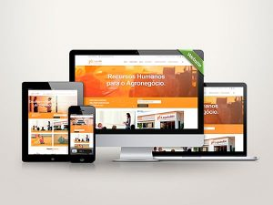 websites-(5)